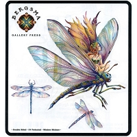 A160 - Bergsma Dragonfly Fairy Art Decal Window Sticker