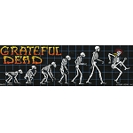 CS096 - Grateful Dead Evolution of a Dead Head Skeletons Large Full Color Bumper Sticker