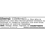 S032 - Liberal Definition Bumper Sticker