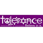 S060 Tolerance Believe in It Interfaith Peace Love Unity Bumper Sticker Decal