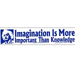 S389 - Imagination Is More Important Than Knowledge Bumper Sticker