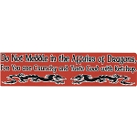 S418 - Do Not Meddle in the Affairs of Dragons Bumper Sticker