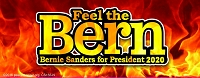 MS155-N - Feel The Bern Bernie Sanders for President 2020 Color Mini Sticker