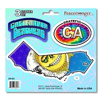 DS055-MAG Grateful California Deadhead Dead State Skeleton Sun Sunshine Daydream 3 Magnet Set