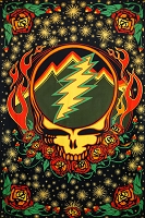 TA054  Grateful Dead Scarlet Fire SYF Lightening Bolt Tapestry Bedspread All Cotton