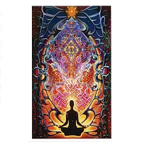 TA060 Mike Dubois Meditation Spiritual Om Charaka Heady Art Cotton Mini Tapestry