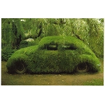 VW01 - Green Beetle Car Postcard
