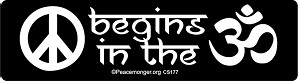 CS177 - Peace Begins in the OM Color Sticker
