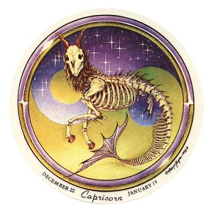 A278 - Capricorn Grateful Dead Skeleton Art Decal Window Sticker