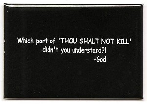 "FM054 - Which Part of ""Thou Shalt Not KIll"" didn't you understand? - God Quote Fridge Magnet"