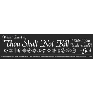 "S005 - What part of ""Thou Shalt Not Kill"" Didn't you understand? Large Bumper Sticker"
