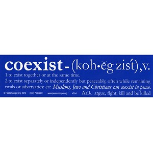 S049 - Coexist Definition Bumper Sticker