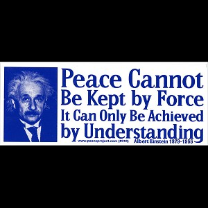 S133 - Peace cannot be kept by force Bumper Sticker