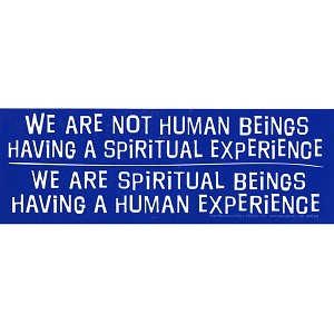 S335 - We are Spiritual Beings having a Human Experience Bumper Sticker