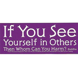 S376 - If You See Yourself In Others, Then Whom Can You Harm Bumper Sticker