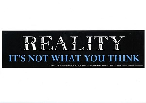 S380 - Reality it's not what you think Bumper Sticker